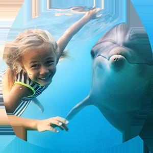 cirkel kind en dolfijn2